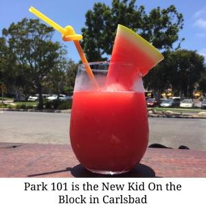 Park101 Carlsbad